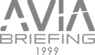 Avia-briefing